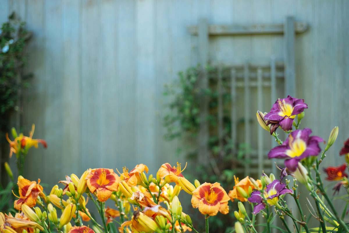 decoracion-exterior-ideas-tendencias-terraza-jardin